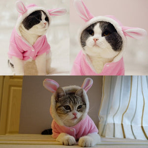 Cute Rabbit Mascotas Costume Clothes For Pet Cat