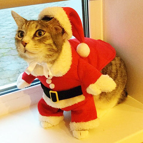 Christmas Cat Clothes Suit Winter Pet Clothes