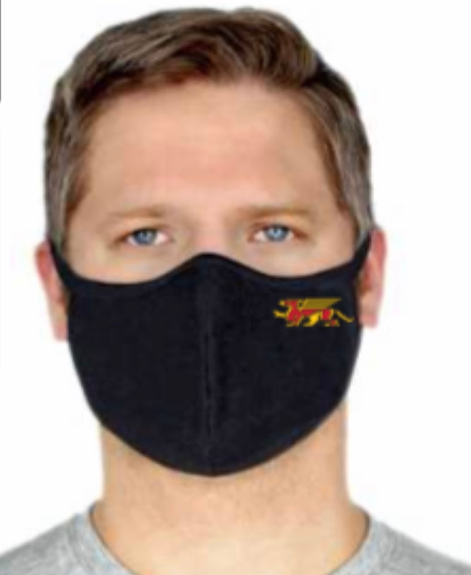 Gryphon Premium Bamboo/Cotton 2 ply lightweight Face Mask-Black