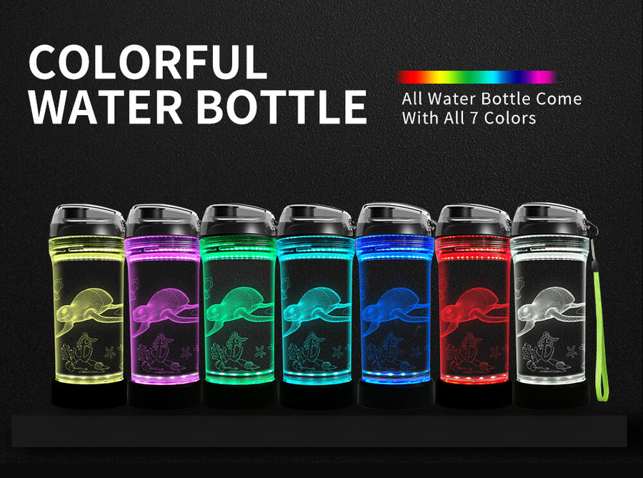 turtle water bottle