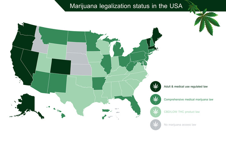 Where is Recreational Cannabis at in 2020?