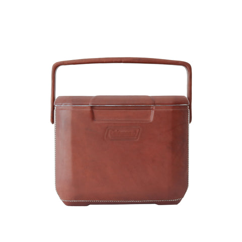 Excursion 16 Coolbox - Brown