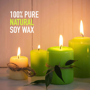 Oraganix Natural Soy Wax for DIY Candle Making Supplies-10lb Bag with 150ct 6'' Pre-Waxed Candle Wicks