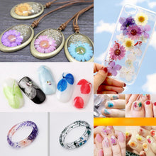 Natural Dried Flowers Combination DIY Pressed Herbarium Flower for Resin Jewelry Crafts Nail Stickers (E)