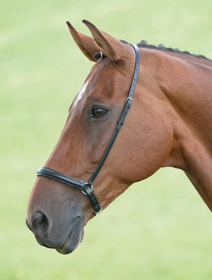 Blenheim Muserolle Drop noseband - SHOP HORSE