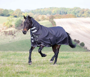 Shires Tempest Plus Combo 300g - SHOP HORSE