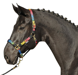HKM Licol Magic - Zebre Rainbow - SHOP HORSE