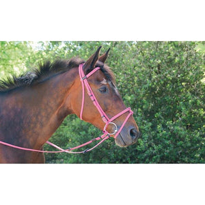Biotack Bridon - SHOP HORSE