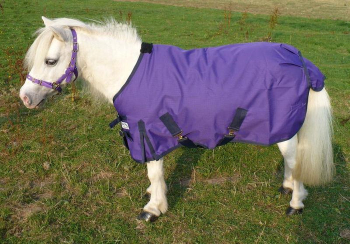 Dinky Impermeable Violet