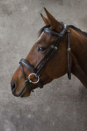 Ecolux Bridon Confort - SHOP HORSE
