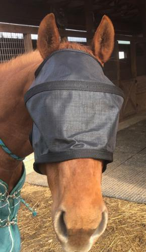 Masque Anti UV 90% Rigide sans Oreilles - SHOP HORSE
