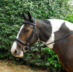 Windsor Bridon Confort - SHOP HORSE