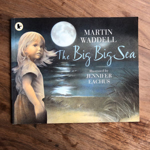 The Big Big Sea by Martin Waddell