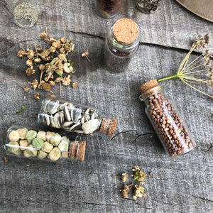 Seed Saving Kit