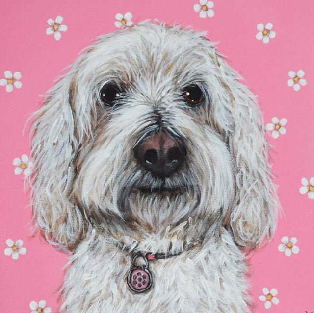 In The Pink Greetings Card By Claire Brierley