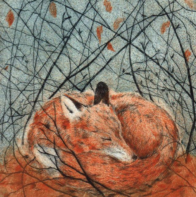 Resting Fox Greetings Card By Sarah Bays