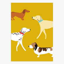 Load image into Gallery viewer, Boxed Notecards Dogs
