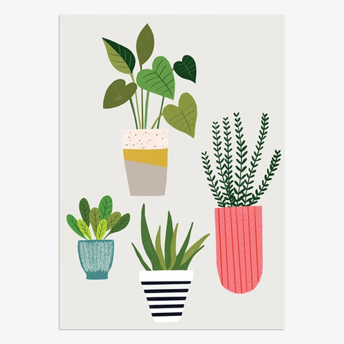 Boxed Notecards Plants