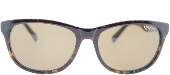 Sperry SP Huntington C01 Oval Plastic Sunglasses - Tortoise Navy with Brown Lens