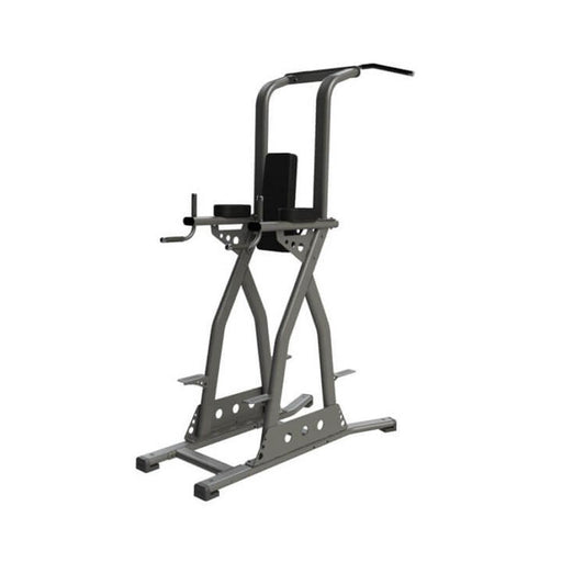 Exigo Chinning / Dipping / Leg Raise Station - Rear Chin