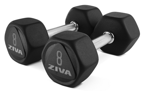 Ziva Sl Premium Hexagon Virgin Rubber Dumbbells