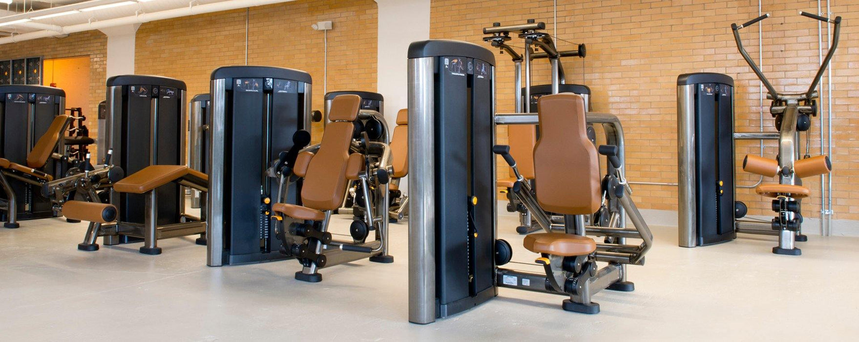 Life Fitness Insignia Series Torso Rotation Selectorised
