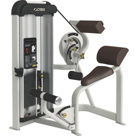 Cybex Prestige Series Back Extension Selectorised