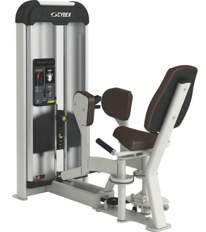 Cybex Prestige Series Hip Abduction Selectorised