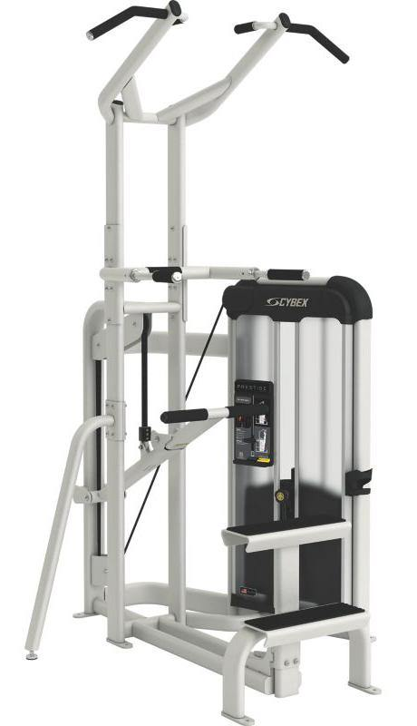 Cybex Prestige Series Dip Chin Assisted Selectorised
