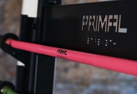 Primal Strength Ceramic Coated Linda Pink Olympic 15kg Bar