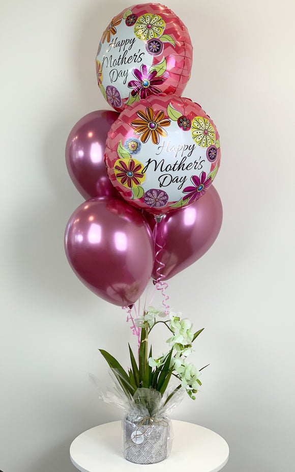 Mother's Day Orchid - Balloonery