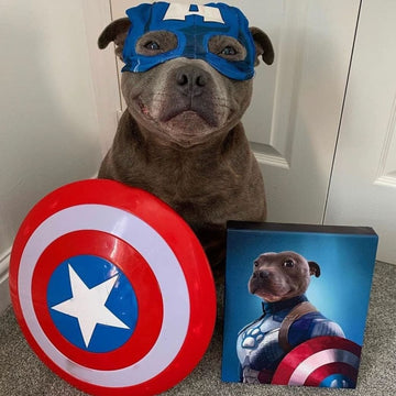 Captain Pawmerica - Custom Pet Canvas