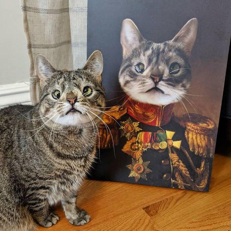 The Veteran - Custom Pet Canvas