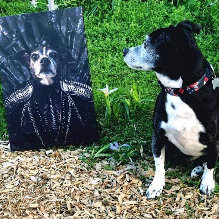 The Queen of the Seven Kingdoms - Custom Pet Canvas