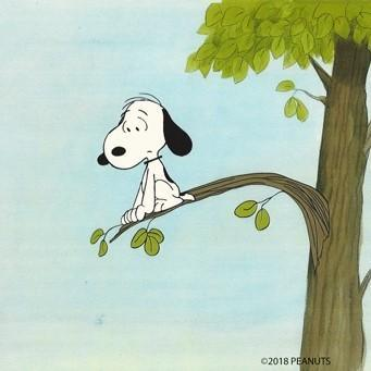 PEANUTS PRODUCTION ART: SNOOPY
