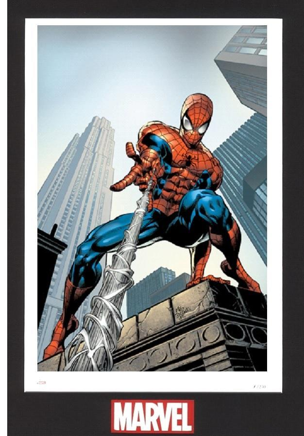 AMAZING SPIDER-MAN #520 -LITHOGRAPH Lithograph MARVEL FINE ART