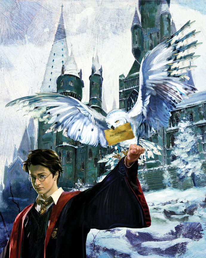 HARRY AND HEDWIG Giclée On Paper/Canvas HARRY POTTER FINE ART
