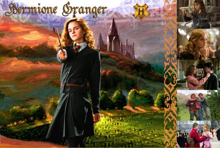 WITCHES & WIZARDS COLLECTION HERMIONE GRANGER Giclée on Paper HARRY POTTER FINE ART