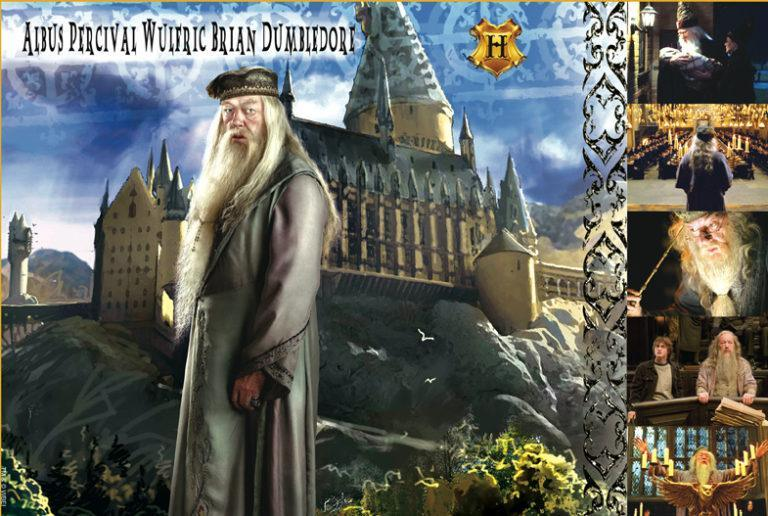 WITCHES & WIZARDS COLLECTION ALBUS DUMBLEDORE Giclée on Paper HARRY POTTER FINE ART