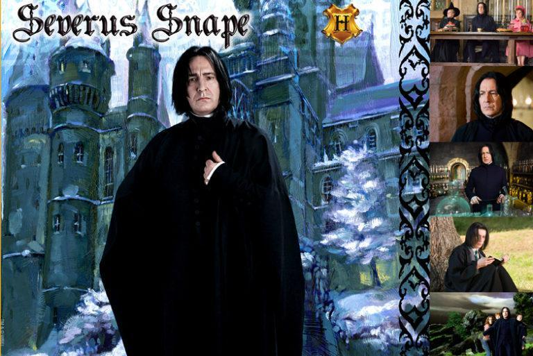 WITCHES & WIZARDS COLLECTION SEVERUS SNAPE Giclée on Paper HARRY POTTER FINE ART