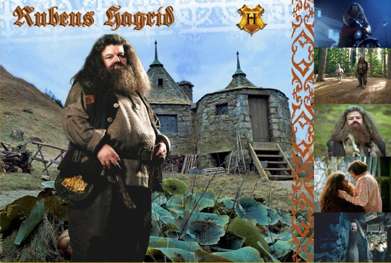WITCHES & WIZARDS COLLECTION RUBIUS HAGRID Giclée on Paper HARRY POTTER FINE ART