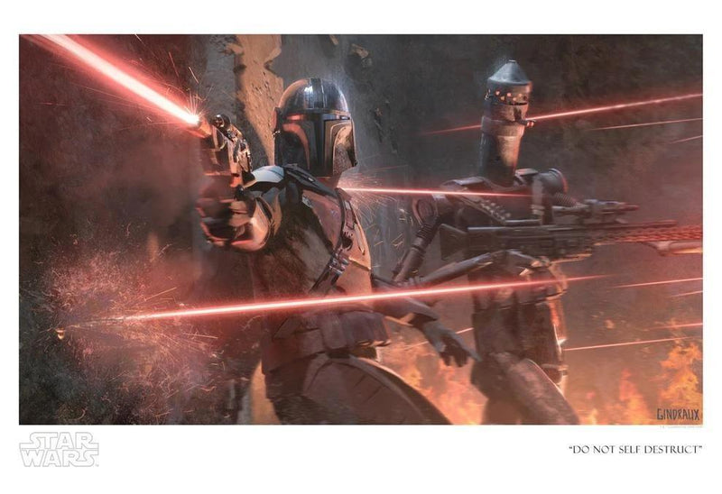 DO NOT SELF DESTRUCT Giclée On Paper/Canvas STAR WARS FINE ART