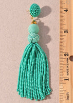 Beaded Tassel Earrings (Turquoise)