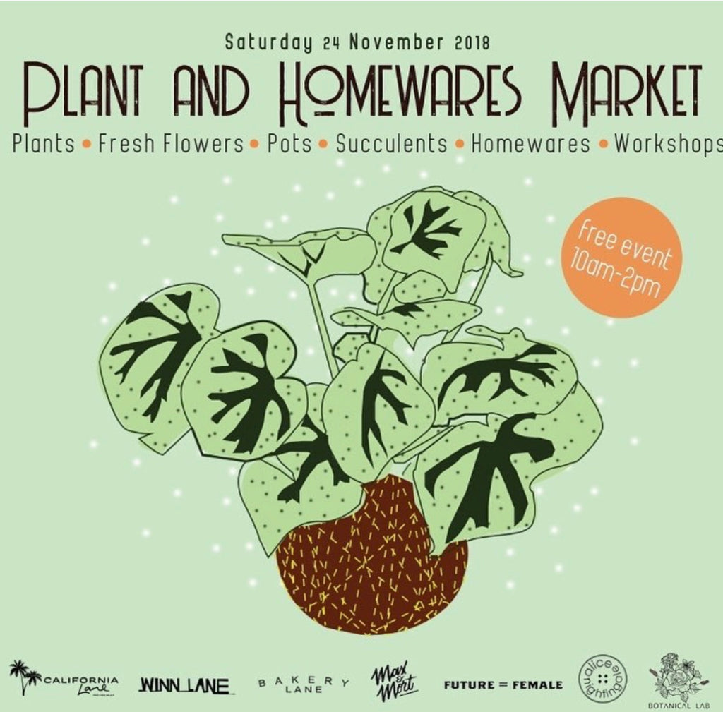 The Lanes Plant and Homewares Market