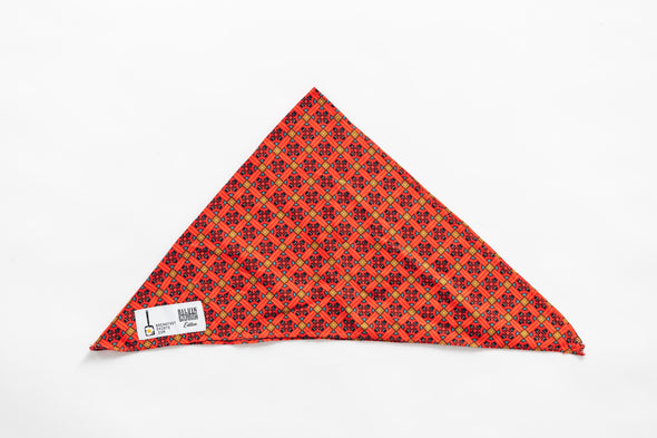the Balkan Butler dog Bandana