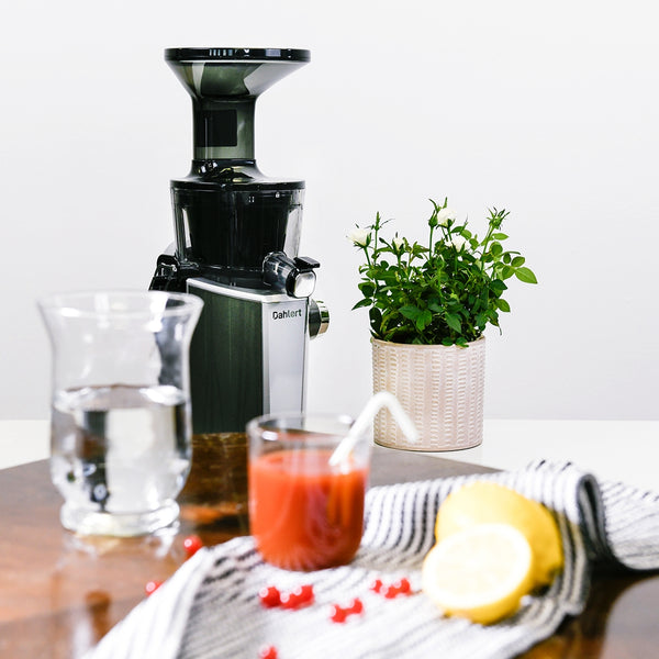 Dahlert slow juicer