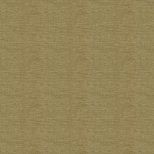 Load image into Gallery viewer, Endurepel Devine Woven Chenille Upholstery Fabric 17 Colors