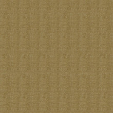 Load image into Gallery viewer, Berry Upholstery Fabric Chenille Furniture Fabric 25 Colors