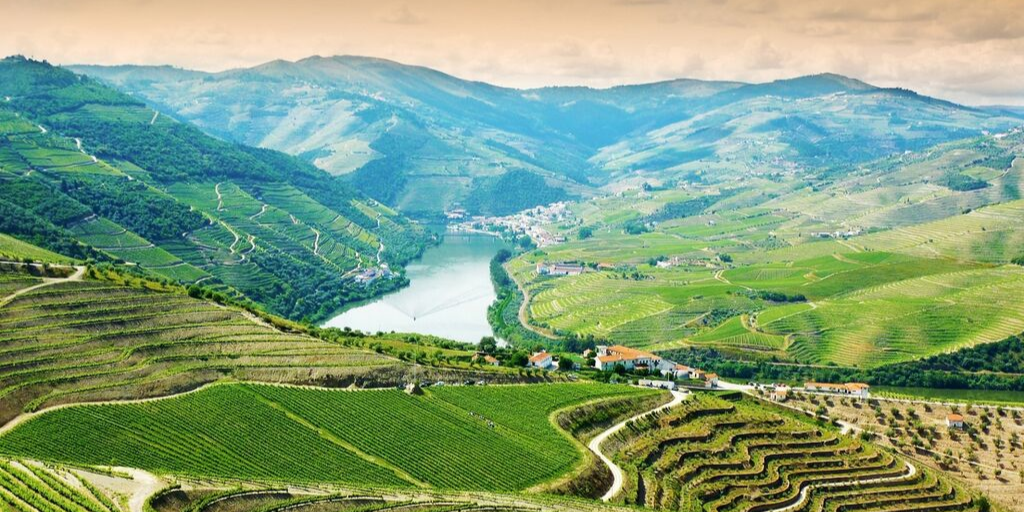 Sommelier Sundays, October 2019: Portugal