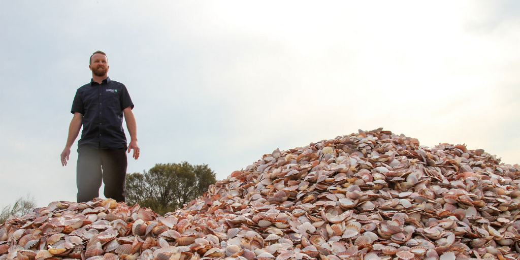 Vue Group partners with Shuck Don't Chuck Shell Recycling Project
